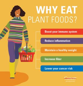 health benefits of a plant based diet