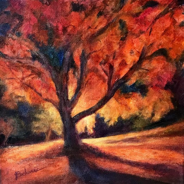 Autumn Tree, 12 x 12 original oil painting by Joan Pechanec. Available at MECA Gallery, McMinnville, OR.  I was awestruck by the color and intensity of this floodlit tree in the autumn night.
