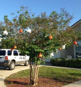 2015 ghost pumpkin tree