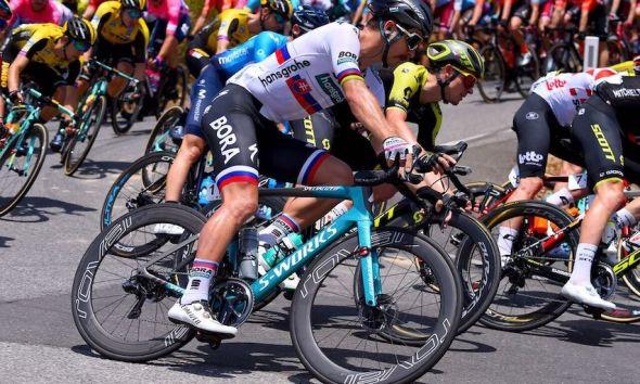 Bicicleta Peter Sagan JoanSeguidor