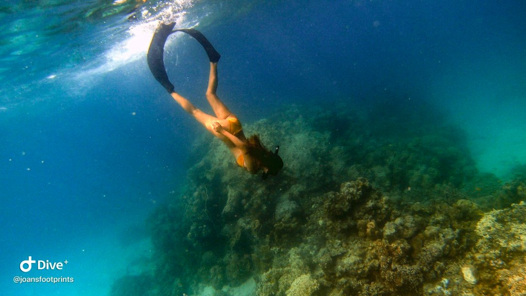 Freediving in Samal with Aquamundo