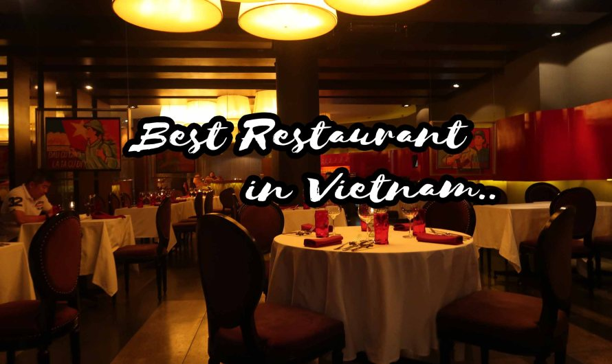 XU Restaurant Lounge in Vietnam: Get the Authentic Taste of Vietnamese Cuisine as Ranked by Tripadvisor!