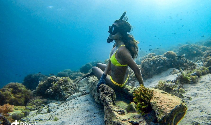 My Freediving Story: Celebrating 1 Year of Making My Mermaid Dreams Come True!