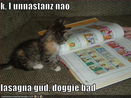 funny-pictures-little-kitten-understands-the-world-after-reading-comics