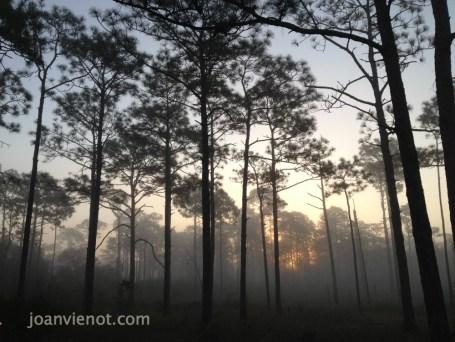 2012-1103 Sunrise