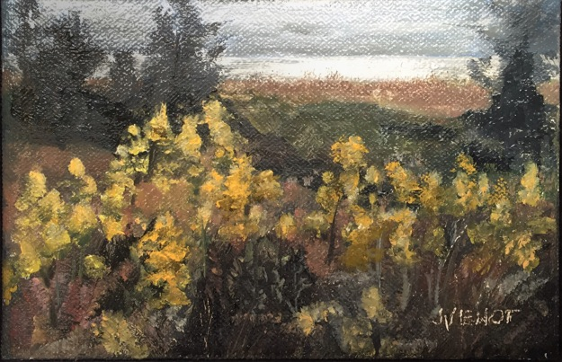 Oil painting of wildflowers in Salinas Park, mid-afternoon light