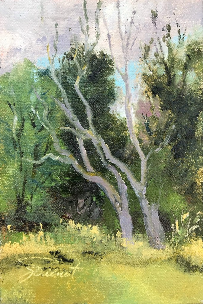 Oils on linen panel, en plein air