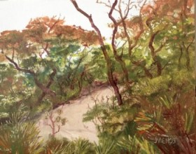 Oil painting of Nature Trail at Grayton Beach State Park