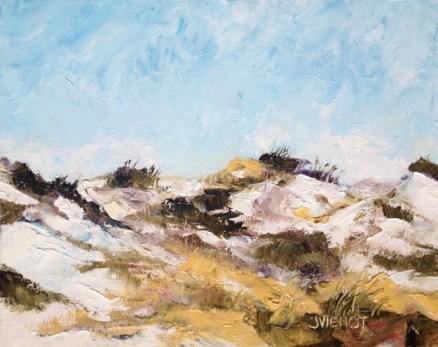 2013-1218 Grayton Beach State Park Dune Scrub