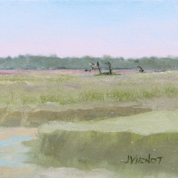 2014-0426 Sea Island Marsh 2