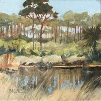2015-0320 Pond on SGI Preserve