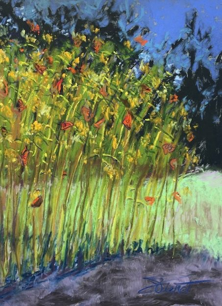 Soft pastels painting of monarchs on butterfly bush, painted en plein air at Watercolor, FL