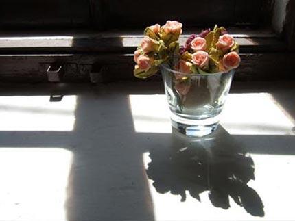 copo-flores.jpg