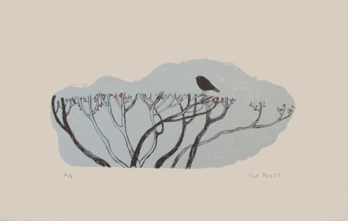 Bird on a hedge, © Podpress