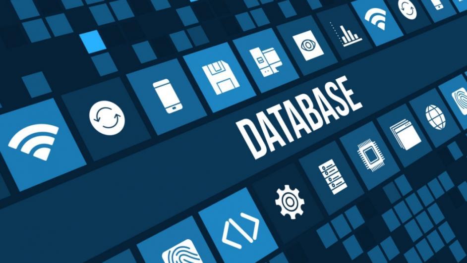 database candidati