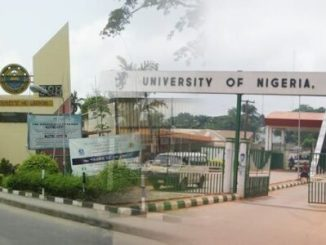 Unn available courses