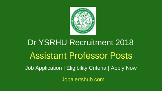 Dr YSRHU Venkatramannagudem 2018 DA Backlog Assistant Professor Posts – 05 Vacancies | Degree, Master Degree and NET | Apply Now