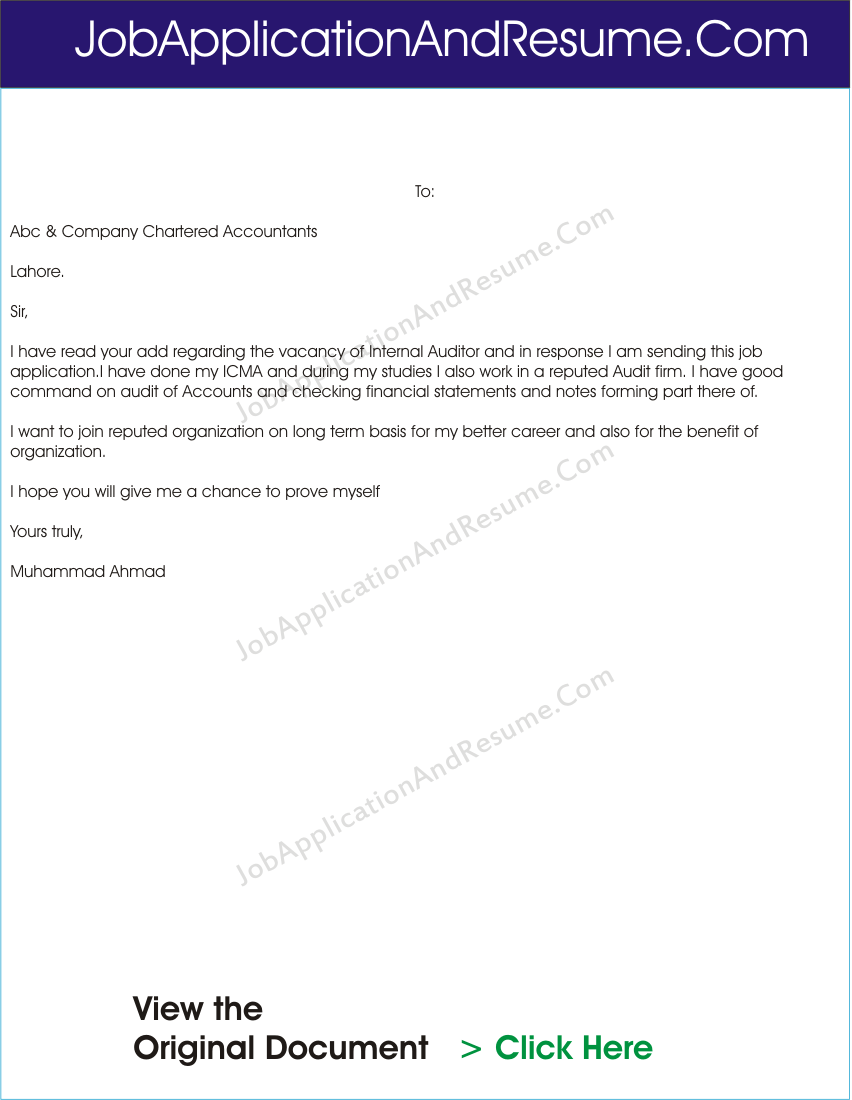 job application letter for internal auditor
