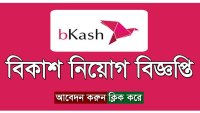 bKash Job Circular 2019 Apply Process – www.bkash.com