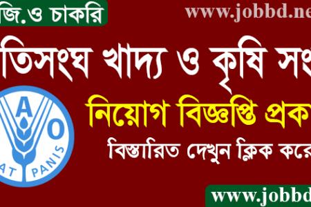 Food And Agriculture Organization FAO Job Circular 2021-fao.org