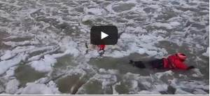Coast Guard pulls lucky Labrador from icy Michigan channel  Video 1