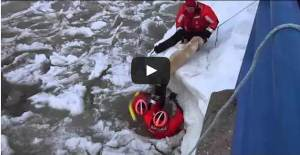 Coast Guard pulls lucky Labrador from icy Michigan channel  Video 2