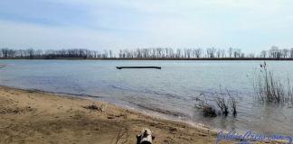 Gull Island Lake St Clair 2017 Site of Jobbie Nooner