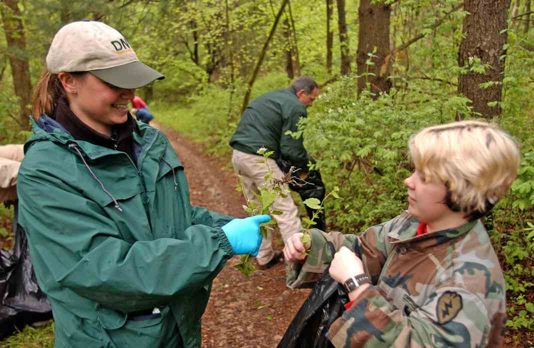 The Michigan DNR hosts monthly stewardship workdays at many state parks in southern Michigan. The work often includes the removal of invasive species and other duties
