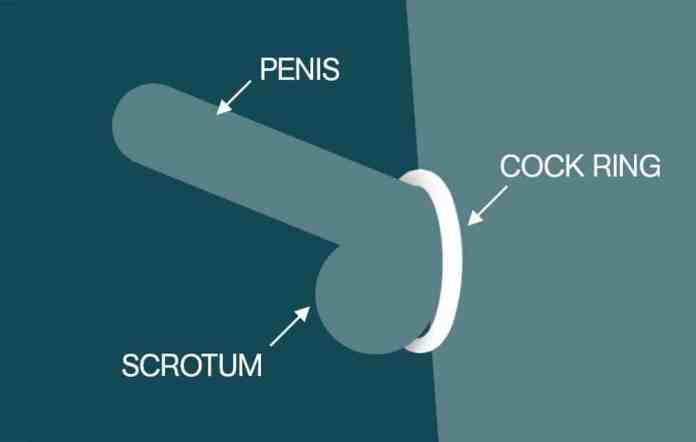 Image result for cock ring