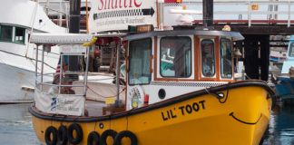 Lil' Toot boat Ferry