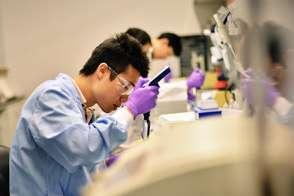 Medical Research Assistant job description, duties, tasks, and responsibilities