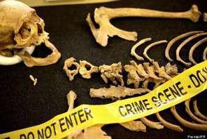 Forensic anthropologist job description, duties, tasks, and responsibilities