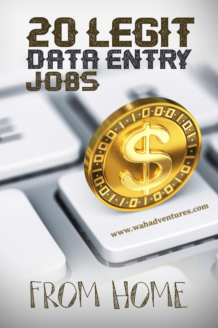 Career Infographic Legitimate Online Data Entry Jobs Can