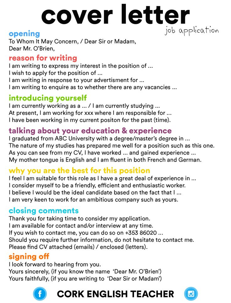 Career infographic  cover letter  job application