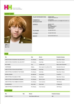 Examples Of Actors Resumes - Template