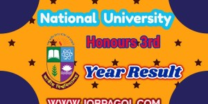 NU Honours 3rd Year Result 2019