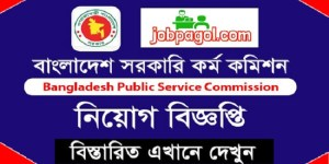 BPSC Job Circular 2019