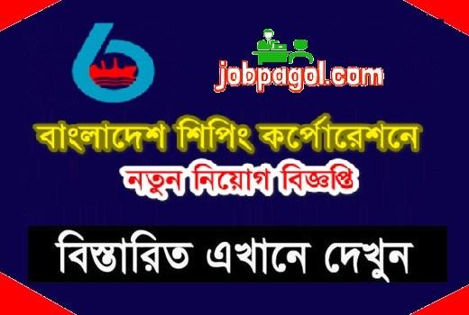 bsc job circular