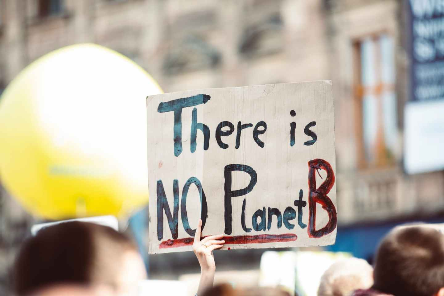 Photo of a climate emergency protest; hand holding up a sign reading 'There is no Planet B'