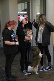 Tauranga Animal Testing Protest 30.7.2013 (16)