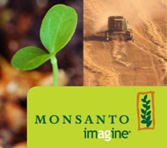 Project Engineer-Monsanto