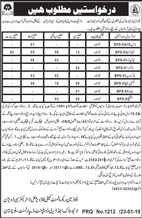 Livestock and Dairy Development Department Jobs In