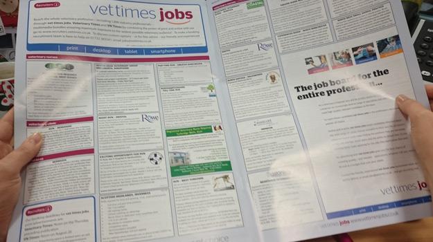 19 Job Search Tips for Veterinary Nurses  Vet Times Jobs