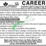 Maple Leaf Cement Jobs