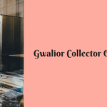Gwalior Collector Office DEO Recruitment 2018 51 Posts Application Form