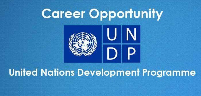 undp vacancies jobsandschools