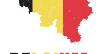 Photo of Current 7 Scholarships in Belgium for Africans