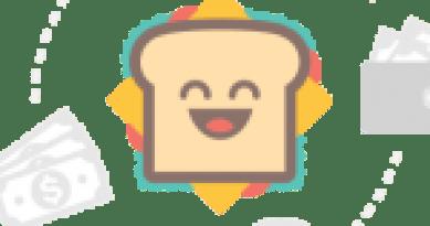 Dhanush Infotech logo