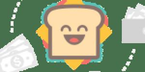 Roamsoft-Technologies-logo