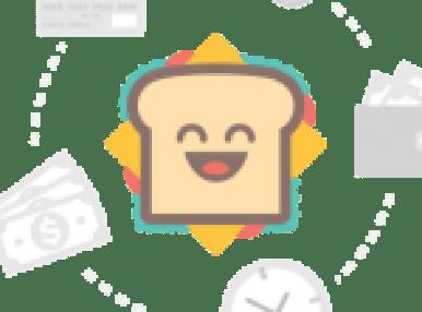 Zalaris Job Vacancies